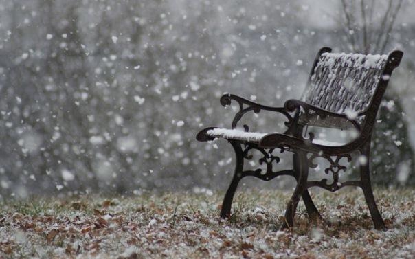 park bench Rachel.jpg